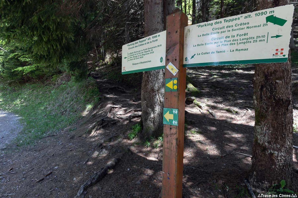 Itinéraire de randonnée La Belle Étoile, Bauges Savoie Alpes - Paysage Montagne Randonnée Outdoor Mountain Landscape Hike Hiking
