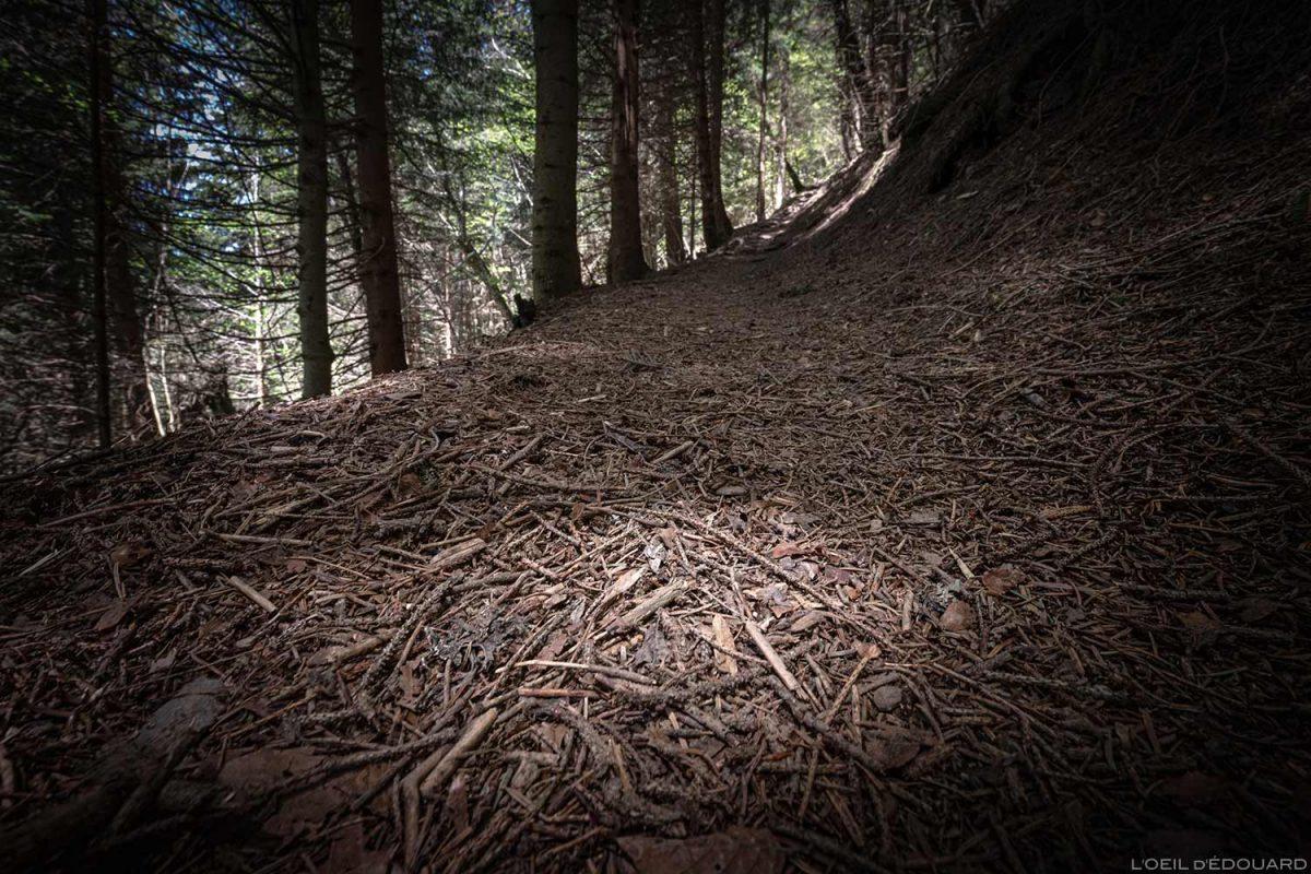 Sentier de randonnée La Belle Étoile, Bauges Savoie Alpes - Paysage Montagne Randonnée Outdoor Mountain Landscape Hike Hiking