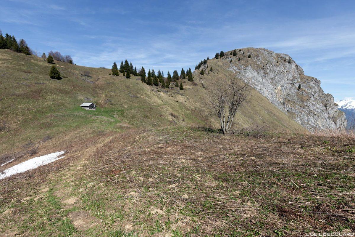 Le Col de l'Alpettaz et le Roc Rouge, entre La Belle Étoile et la Dent de Cons Bauges Savoie Alpes - Paysage Montagne Randonnée Outdoor Mountain Landscape
