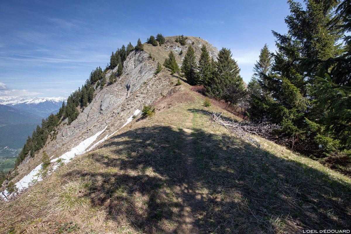 Le Roc Rouge (ou La Négresse) entre La Belle Étoile et la Dent de Cons Bauges Savoie Alpes - Paysage Montagne Randonnée Outdoor Mountain Landscape