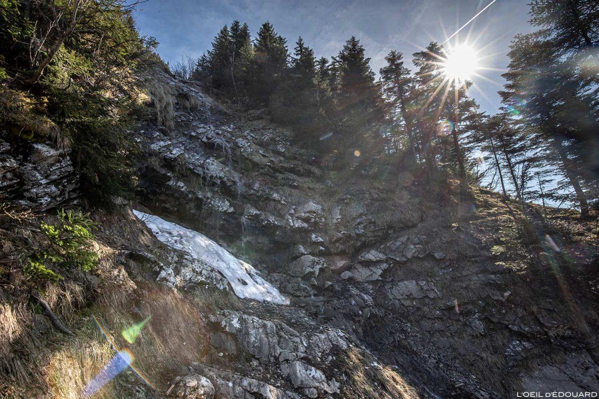 Sentier de randonnée La Forêt de Pontvert - La Belle Étoile Bauges Savoie Alpes - Paysage Montagne Randonnée Outdoor Mountain Landscape