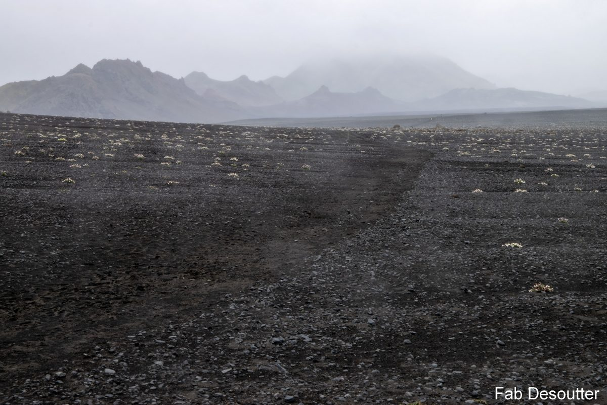Paysage Trek Laugavegur Landmannalaugar Thorsmörk Islande Montagne Trekking Iceland Landscape Mountain Islensk Outdoor Wild