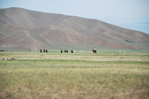 Chevaux dans les steppes de Mongolie Asie Mongolia Asia horses Paysage landscape