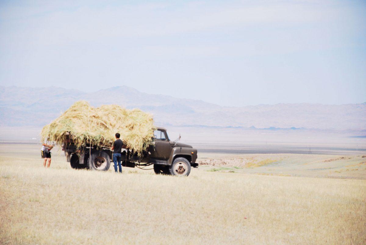 Paysage Kazakhstan Asie Asia landscape road trip travel