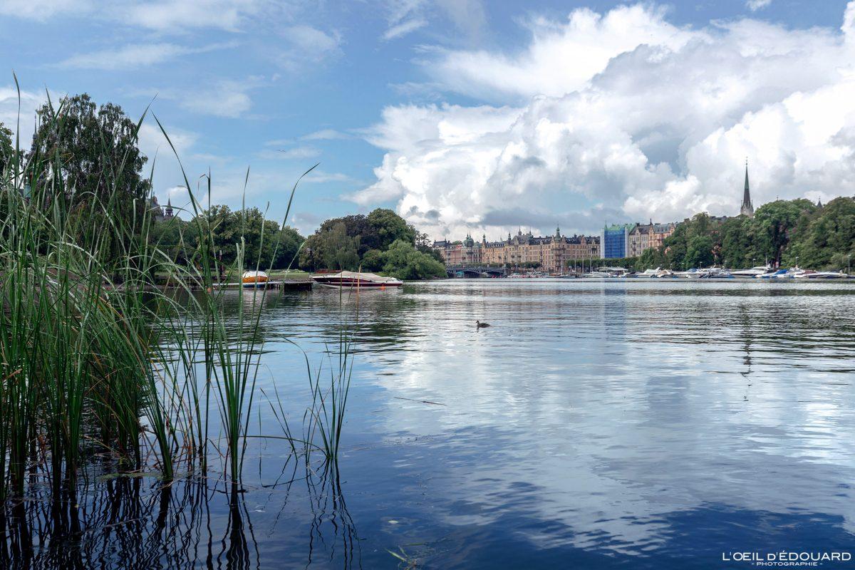 Djurgarden Stockholm Suède Sweden Sverige