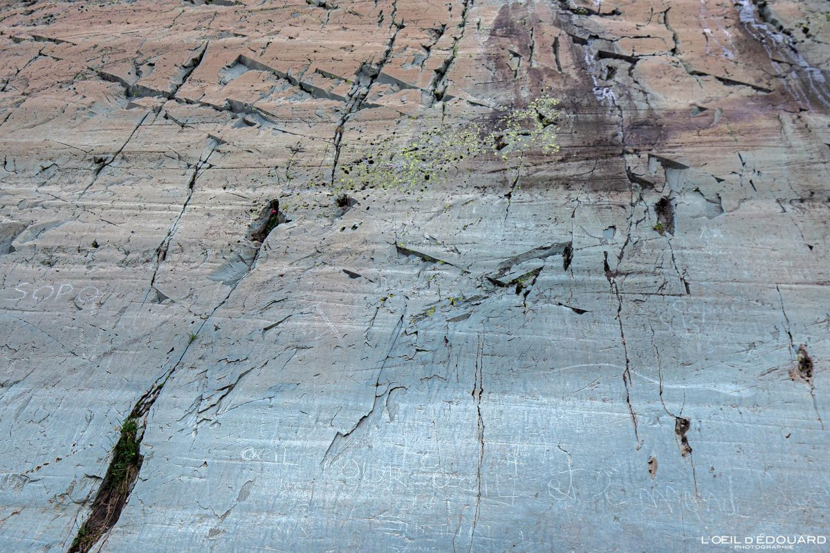 Gravures rupestres Roche de l'Autel Vallée des Merveilles - Massif du Mercantour Alpes-Maritimes Provence-Alpes-Côte d'Azur / Archéologie Préhistoire Art Préhistorique Montagne Outdoor Mountain rock