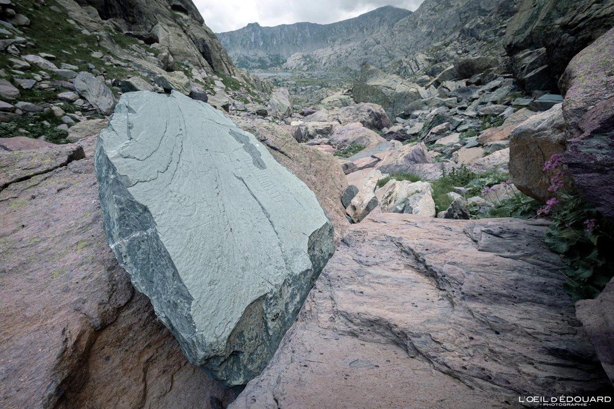 Gravures rupestres Stèle du Chef de Tribu Vallée des Merveilles - Massif du Mercantour Alpes-Maritimes Provence-Alpes-Côte d'Azur / Archéologie Préhistoire Art Préhistorique Montagne Outdoor Mountain rock