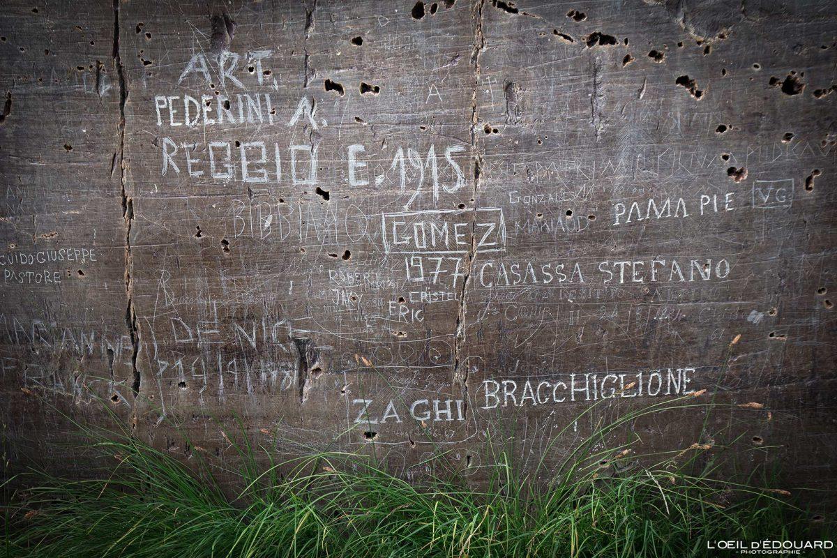 Graffitis Paroi vitrifiée Vallée des Merveilles - Massif du Mercantour Alpes-Maritimes Provence-Alpes-Côte d'Azur / Montagne Outdoor Mountain rock