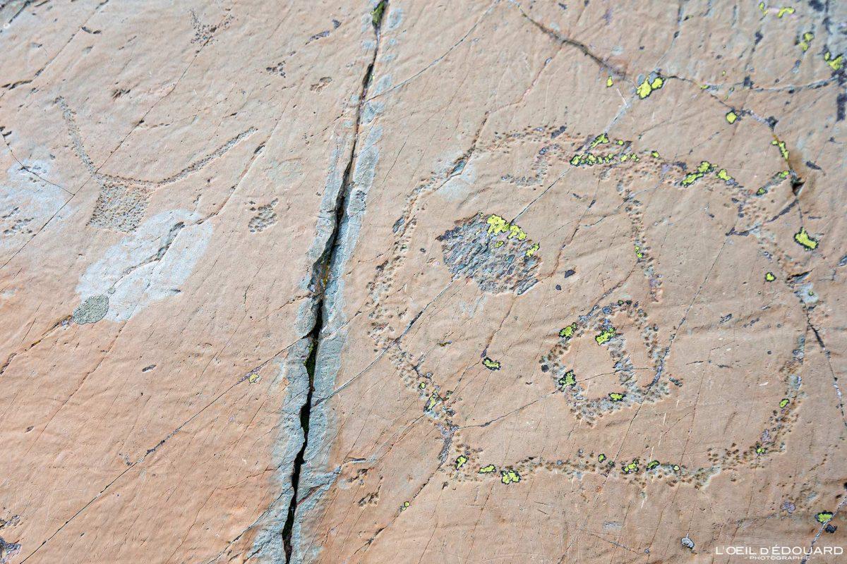 Gravures rupestres Roche Vandalisée Vallée des Merveilles - Massif du Mercantour Alpes-Maritimes Provence-Alpes-Côte d'Azur / Archéologie Préhistoire Art Préhistorique Montagne Outdoor Mountain rock
