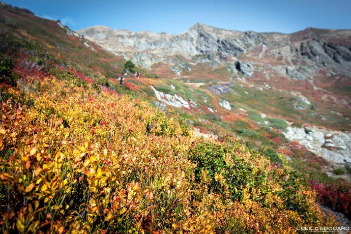 Randonnée Le Grand Arc Savoie Alpes France Montagne Paysage Automne Outdoor French Alps Autumn Landscape Mountain Hike Hiking