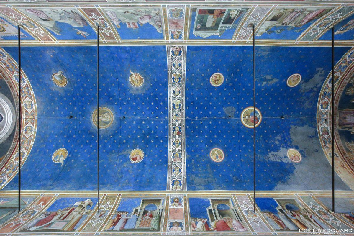 Plafond Chapelle Scrovegni, Padoue Italie - Peintures Fresques Giotto renaissance italienne - Intérieur Capella degli Scrovegni Padova Italia Italy wall paintings