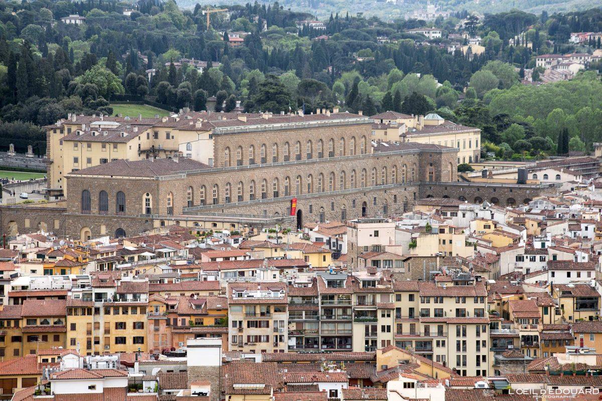 Vue depuis le Campanile de la Cathédrale de Florence Toscane Italie : Palazzo Pitti Firenze Toscana Italia city view Tuscany Italy palace