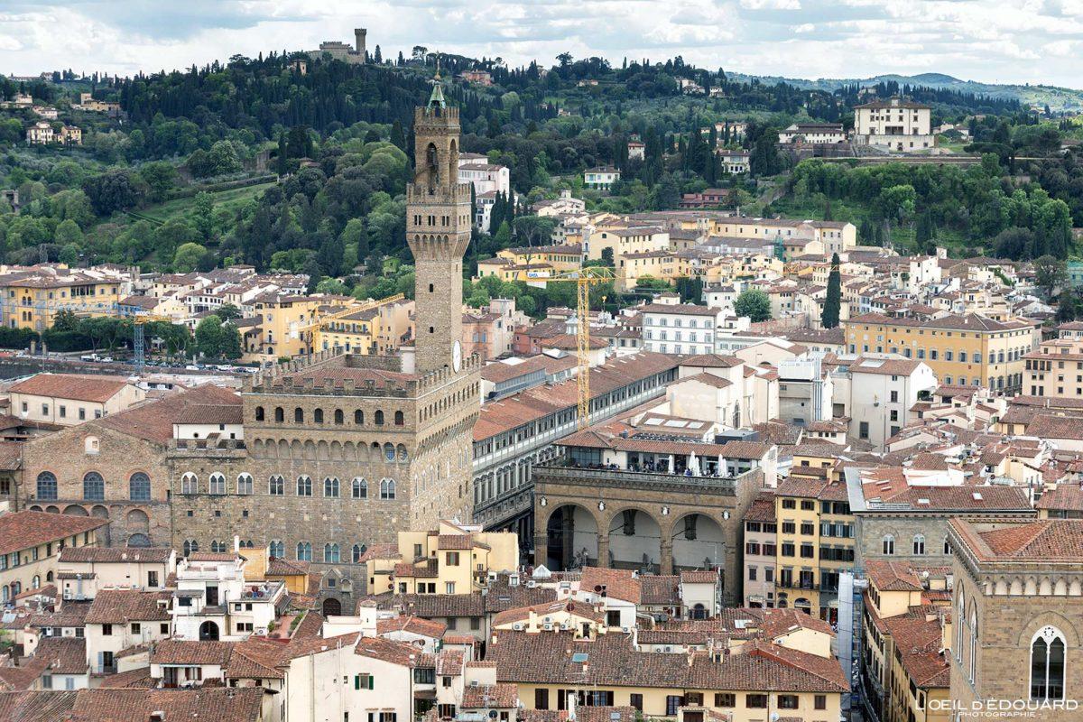 Vue depuis le Campanile de la Cathédrale de Florence Toscane Italie : Palazzo Vecchio Firenze Toscana Italia city view Tuscany Italy