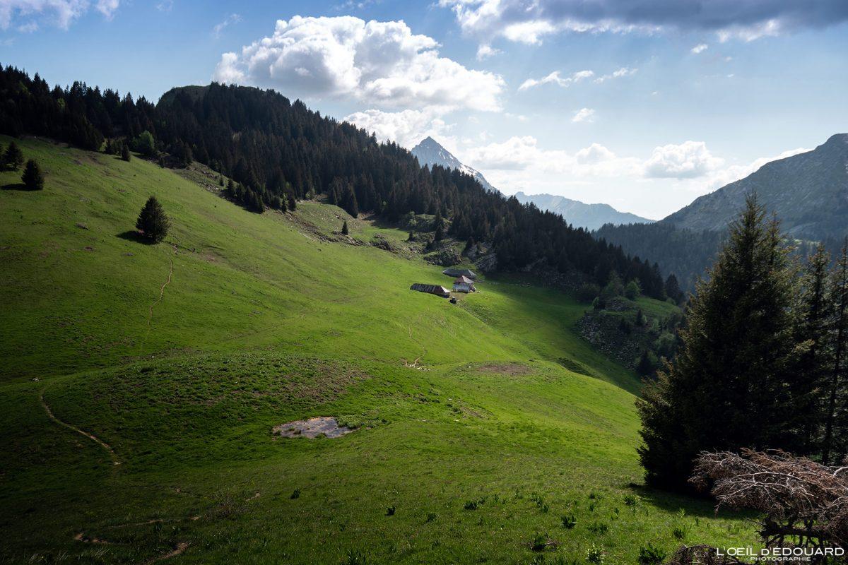 Chalets du Col du Haut du Four - Randonnée Massif des Bauges Savoie Alpes France Paysage Montagne - Mountain Landscape French Alps Outdoor Hike Hiking Trail