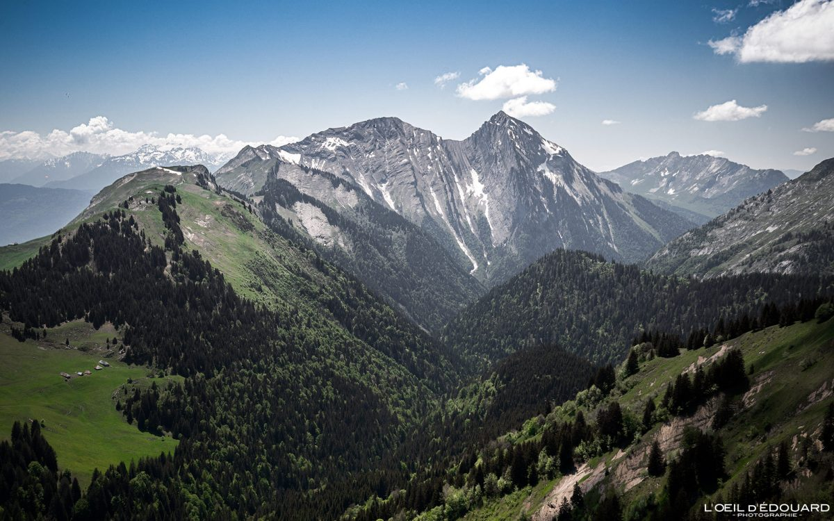 Le Mont Pécloz depuis le Col du Drison - Randonnée Massif des Bauges Savoie Alpes France Paysage Montagne - Mountain Landscape French Alps Outdoor Hike Hiking