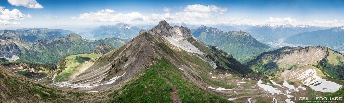 Vue panorama au sommet de La Pointe de Chaurionde : La Pointe de la Sambuy - Randonnée Massif des Bauges Savoie Alpes France Paysage Montagne - Mountain Landscape French Alps Outdoor Hike Hiking