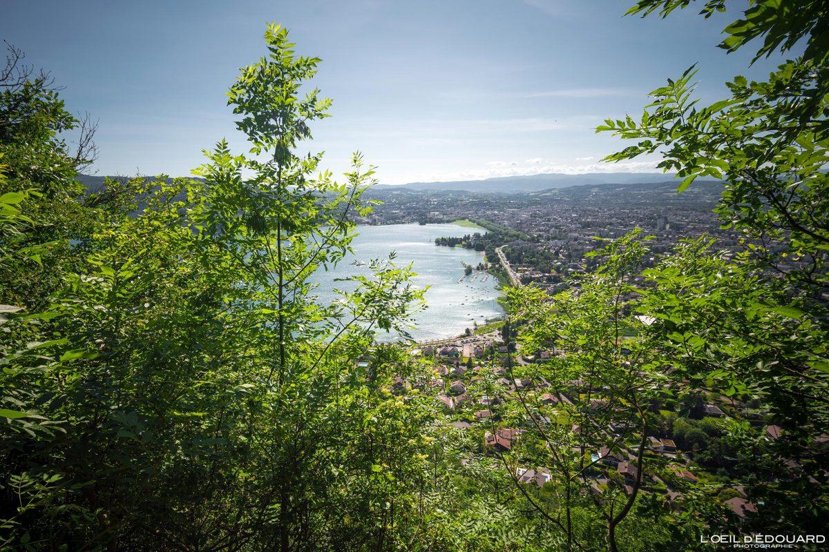 Vue sur Annecy depuis le sentier de randonnée au Mont Veyrier - Haute-Savoie Alpes France Forêt Montagne Paysage - Mountain Forest French Alps Outdoor Hike Hiking