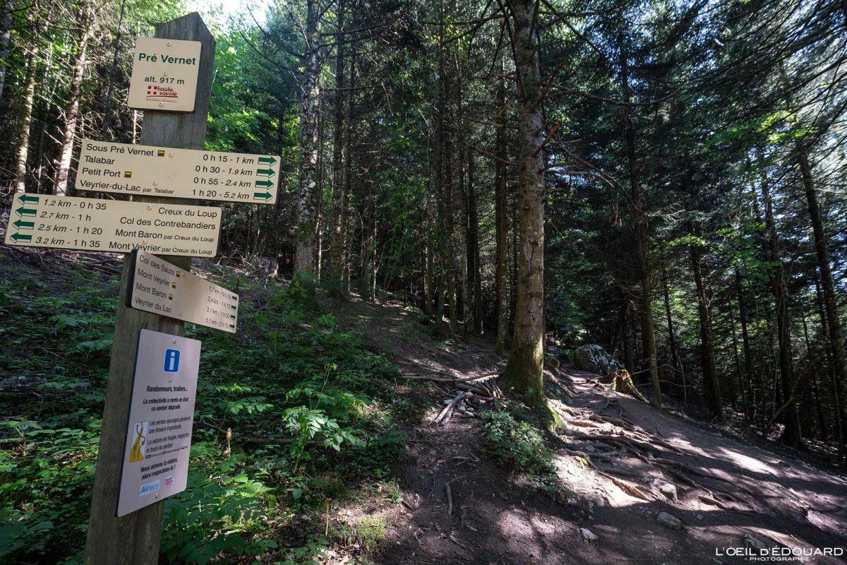 Départ Pré Vernet - Itinéraires de randonnée au Mont Veyrier - Annecy Haute-Savoie Alpes France Forêt Montagne - Mountain Forest French Alps Outdoor Hike Hiking trail