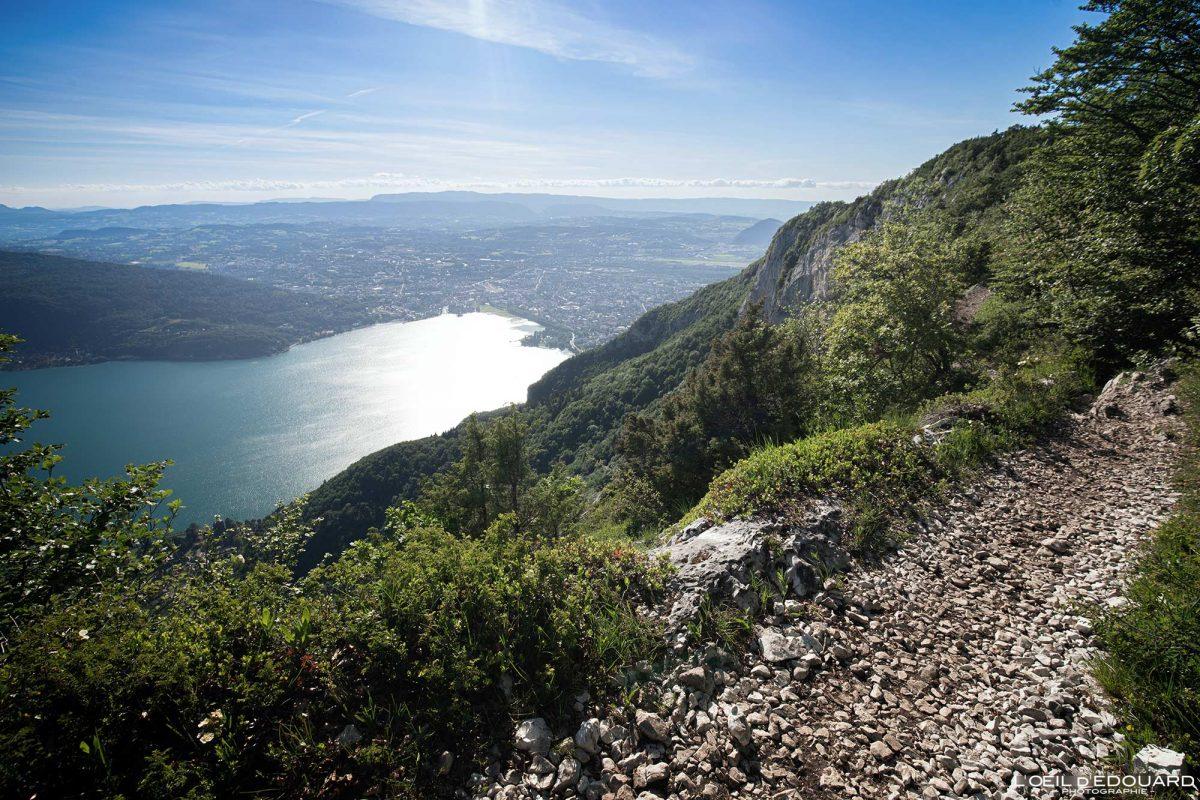 Sentier des Crêtes du Mont Veyrier randonnée - Vue sur Annecy Haute-Savoie Alpes France Paysage Montagne - Mountain Landscape French Alps Outdoor Hike Hiking view lake