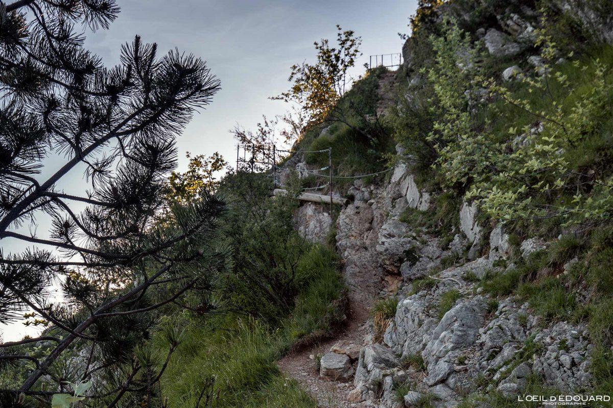 Passage Sentier de randonnée Mont Baron - Mont Veyrier Annecy Haute-Savoie Alpes France Montagne - Mountain Landscape French Alps Outdoor Hike Hiking trail