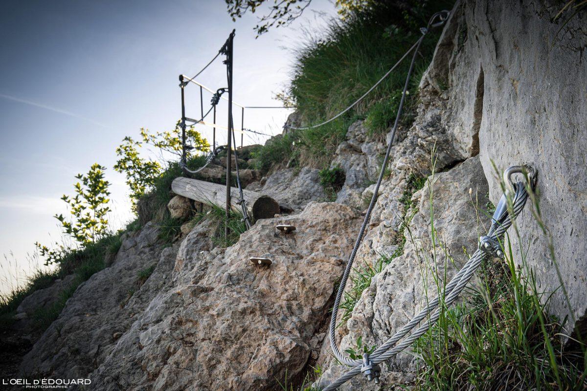 Passage marches et cables Sentier de randonnée Mont Baron - Mont Veyrier Annecy Haute-Savoie Alpes France Montagne - Mountain Landscape French Alps Outdoor Hike Hiking trail