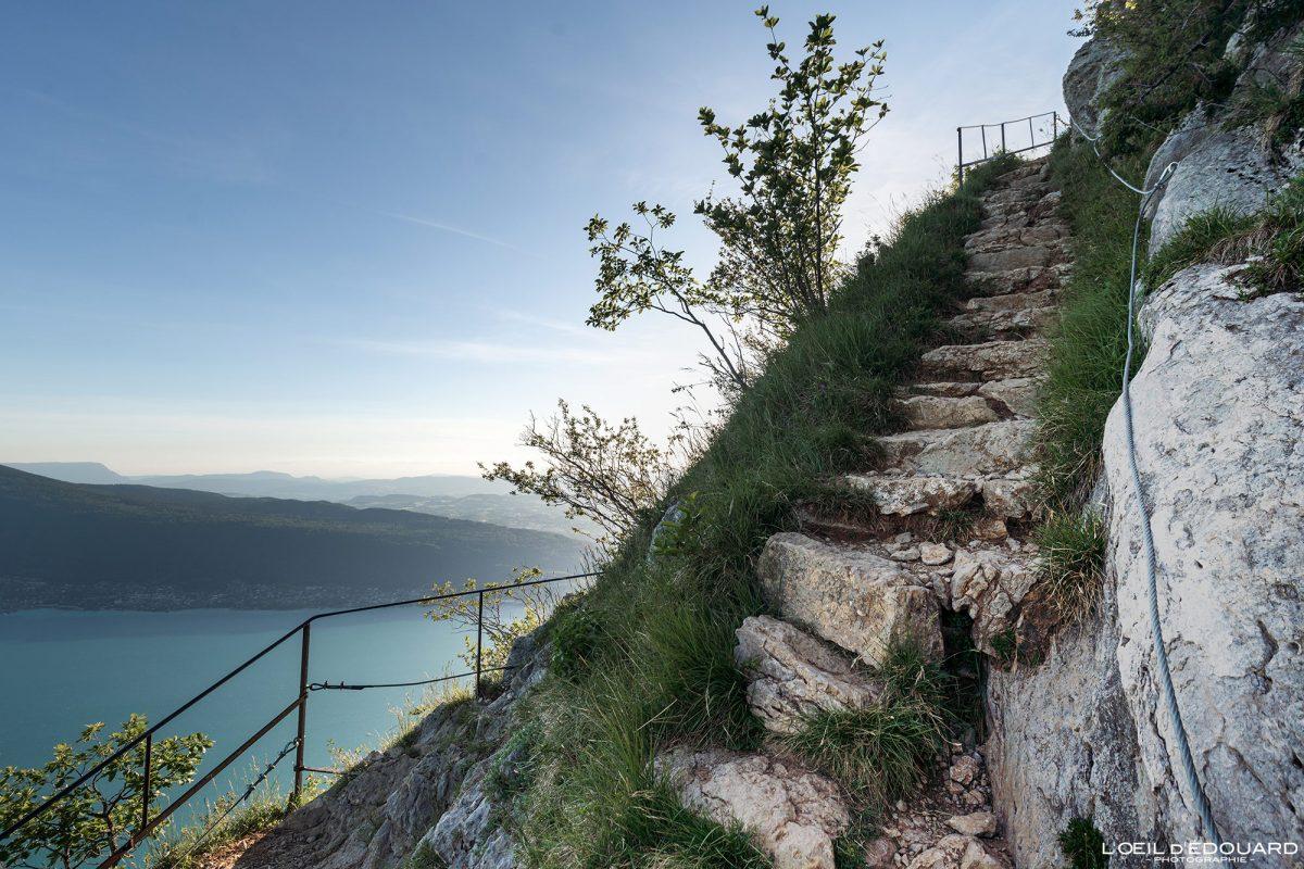 Passage escalier Sentier de randonnée Mont Baron - Mont Veyrier Annecy Haute-Savoie Alpes France Montagne - Mountain Landscape French Alps Outdoor Hike Hiking trail