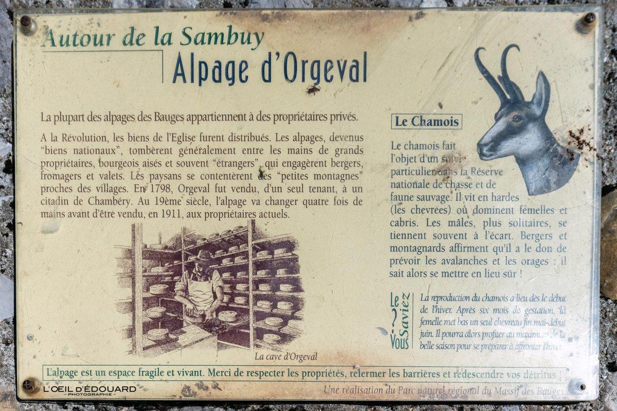 Panneau Informations Alpage Chalets d'Orgeval Massif des Bauges Savoie Alpes France Montagne - French Alps Mountain Life Outdoor
