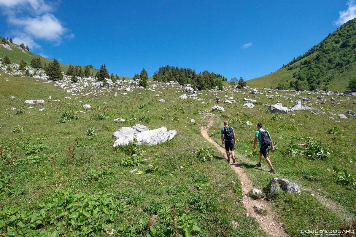 Randonnée Col d'Orgeval Massif des Bauges Savoie Alpes France Paysage Montagne - House Mountain Landscape French Alps Outdoor Hike Hiking trail