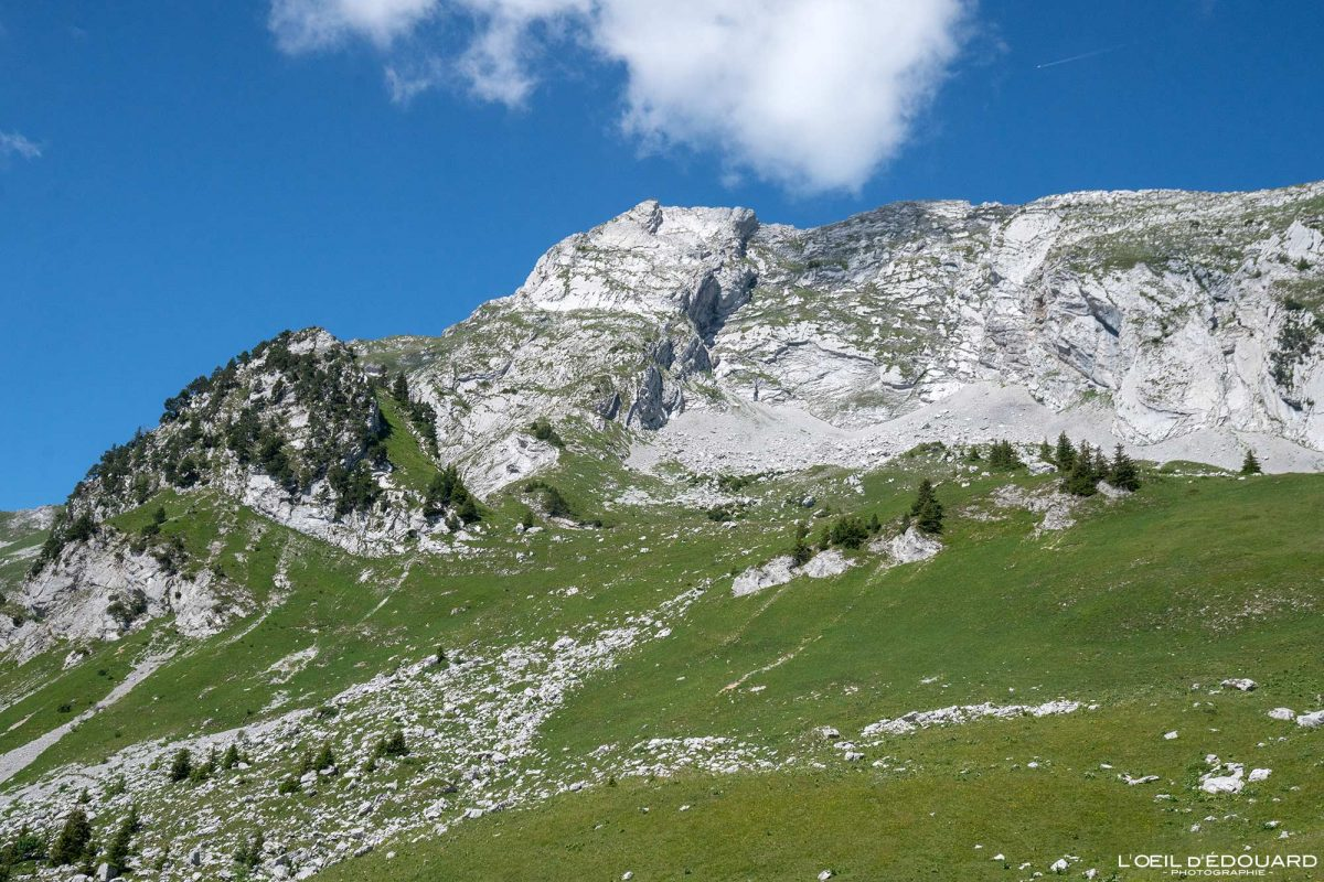 Pointe de l'Arcalod Massif des Bauges Savoie Alpes France Paysage Montagne - Mountain Landscape French Alps Outdoor