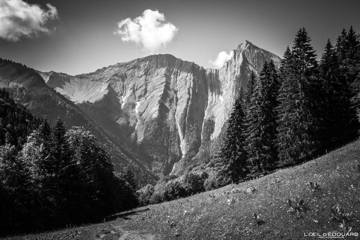 Face Nord du Mont Pécloz Massif des Bauges Savoie Alpes France Paysage Montagne - Mountain Landscape French Alps Outdoor