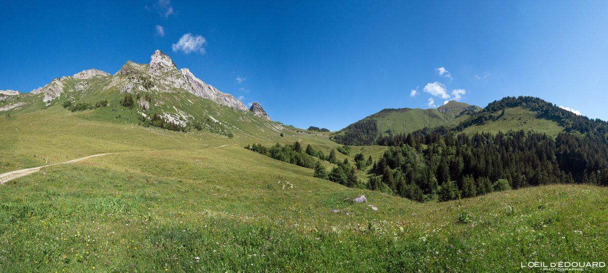 Alpage Col d'Orgeval Massif des Bauges Savoie Alpes France Paysage Montagne Arcalod Chaurionde - Mountain Landscape French Alps Outdoor Hike Hiking
