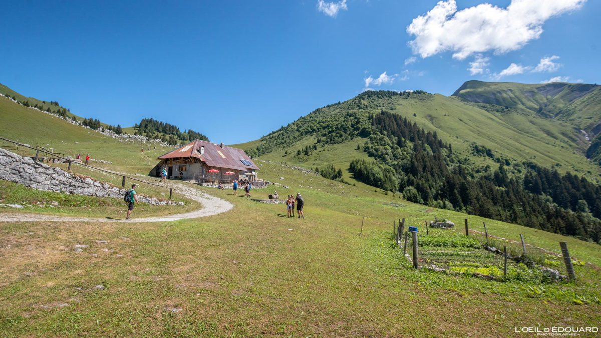 Les Chalets d'Orgeval Massif des Bauges Savoie Alpes France Paysage Montagne Chaurionde - House Mountain Landscape French Alps Outdoor Hike Hiking