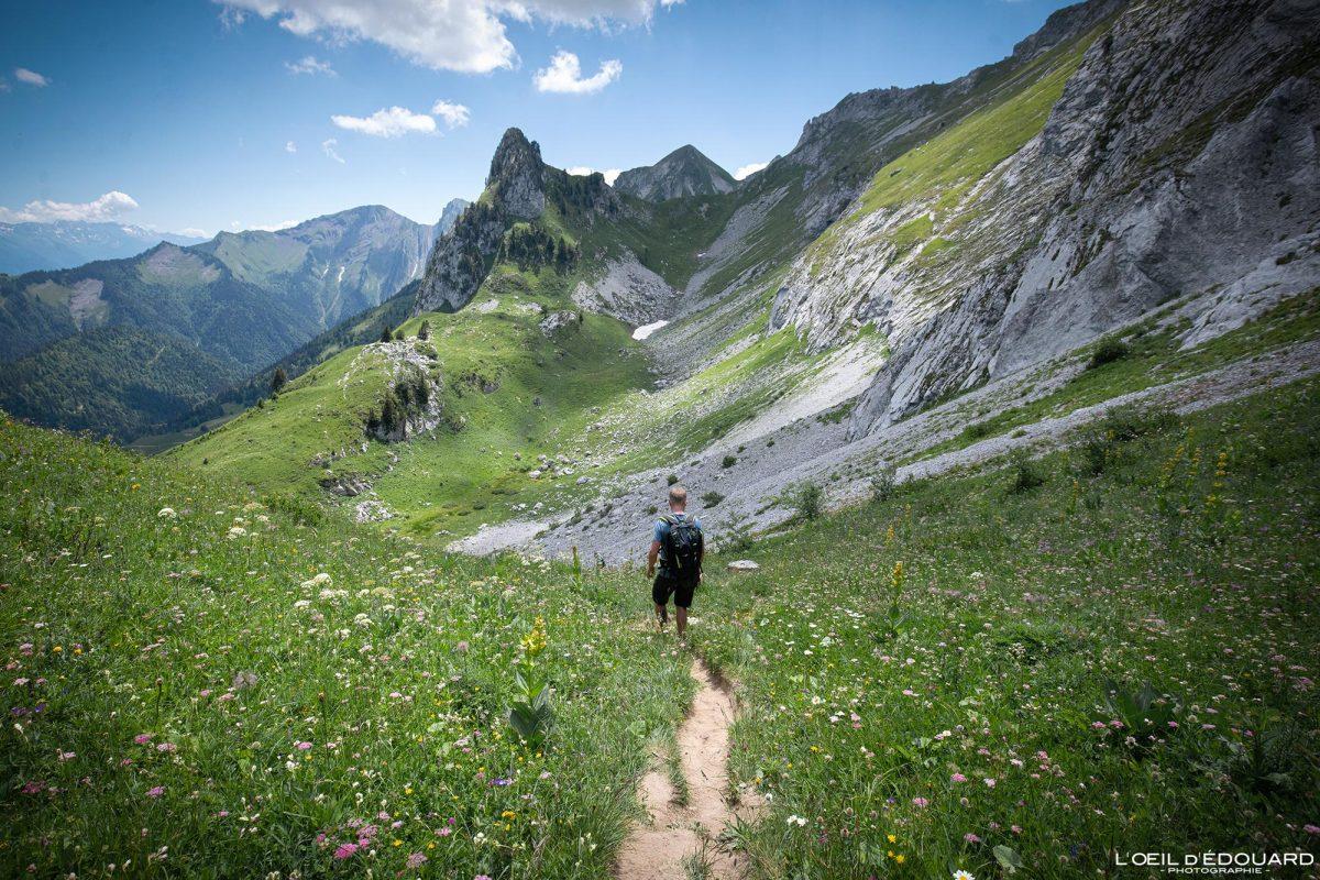Combe du Banc Ferrand Arcalod Massif des Bauges Savoie Alpes France Paysage Fleurs Montagne Randonnée - Landscape Mountain Flowers French Alps Outdoor Hike Hiking trail
