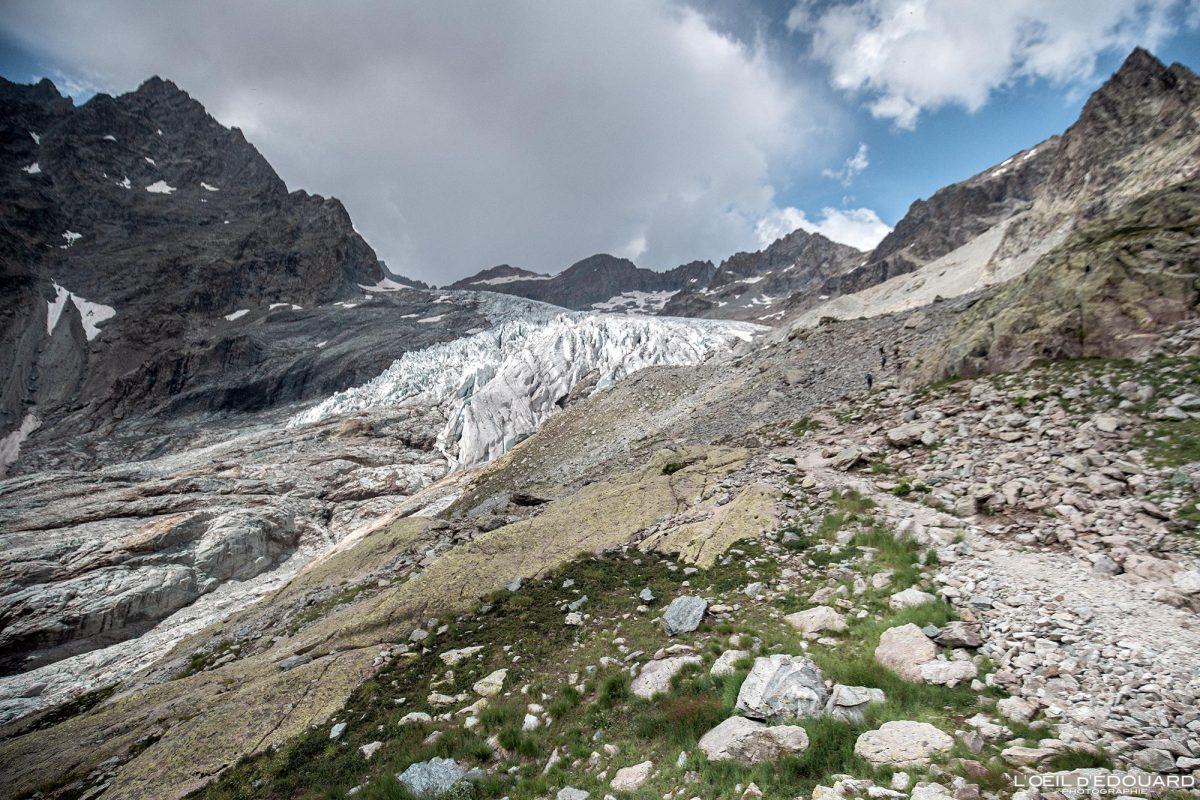 Sentier Randonnée au Glacier Blanc Massif des Écrins Hautes-Alpes France Randonnée Montagne Paysage - Mountain Landscape French Alps Outdoor Hike Hiking