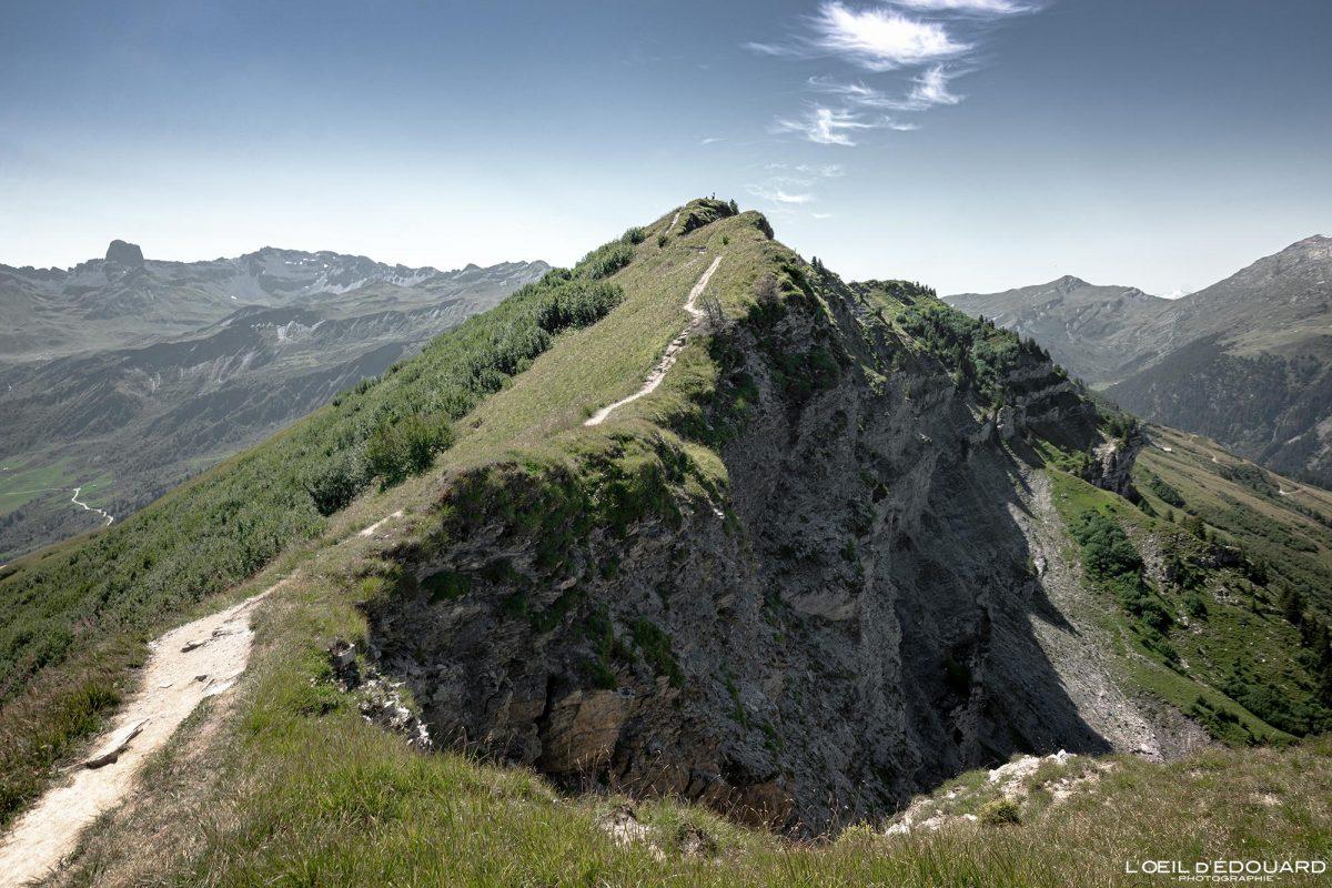 Sommet de la Roche Parstire Massif du Beaufortain Randonnée Savoie Alpes France Paysage Montagne - Mountain Landscape French Alps Outdoor Hike Hiking