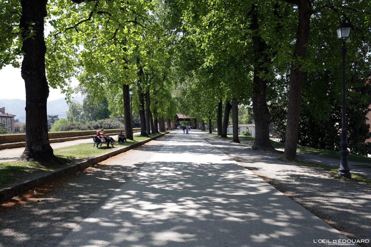 Allée remparts Lucques Toscane Italie Voyage Tourisme - Via della Mura urbane Lucca Toscana Italia Travel Italy Tuscany