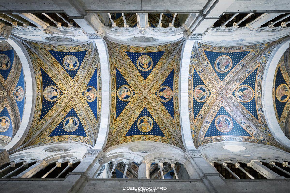 Plafond voûte intérieur Église de Lucques Toscane Italie Voyage Tourisme - Chiesa San Michele in Foro Lucca Toscana Italia Travel Italy Tuscany Italian church ceiling architecture