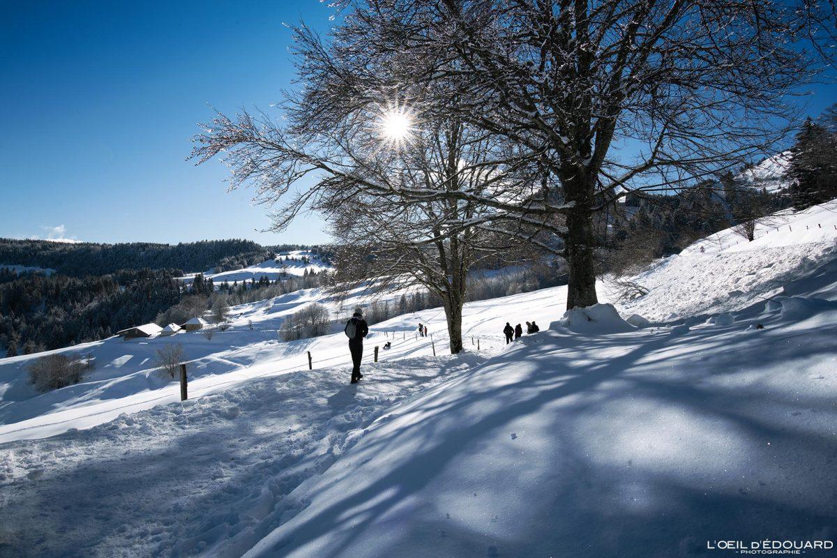 Randonnée Raquettes hiver neige Le Revard Massif des Bauges Savoie Alpes Paysage Montagne France Outdoor winter snow French Alps Mountain Landscape