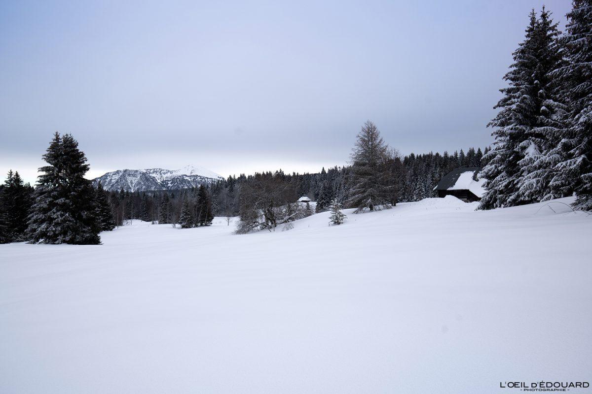 Tourbière de Creusâtes Randonnée Raquettes Le Revard Massif des Bauges Savoie Alpes Paysage Montagne Hiver Neige France Outdoor snow winter French Alps Mountain Landscape