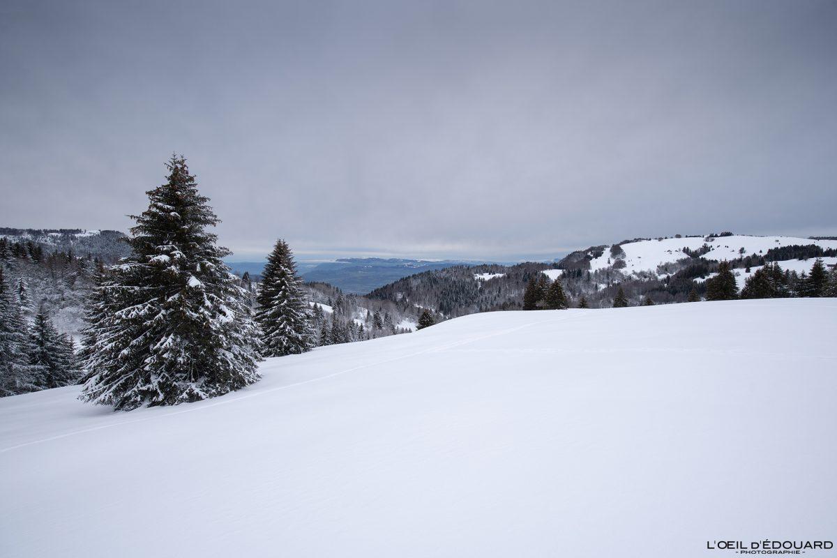 Randonnée Raquettes Le Revard Massif des Bauges Savoie Alpes Paysage Montagne Hiver Neige France Outdoor snow winter French Alps Mountain Landscape