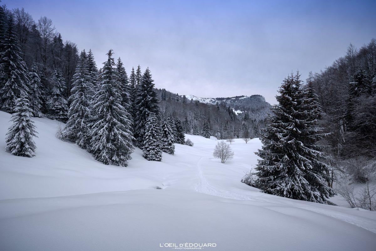 Randonnée Raquettes Le Revard Massif des Bauges Savoie Alpes Paysage Montagne Hiver Neige France Outdoor French Alps Mountain Landscape Winter Snow