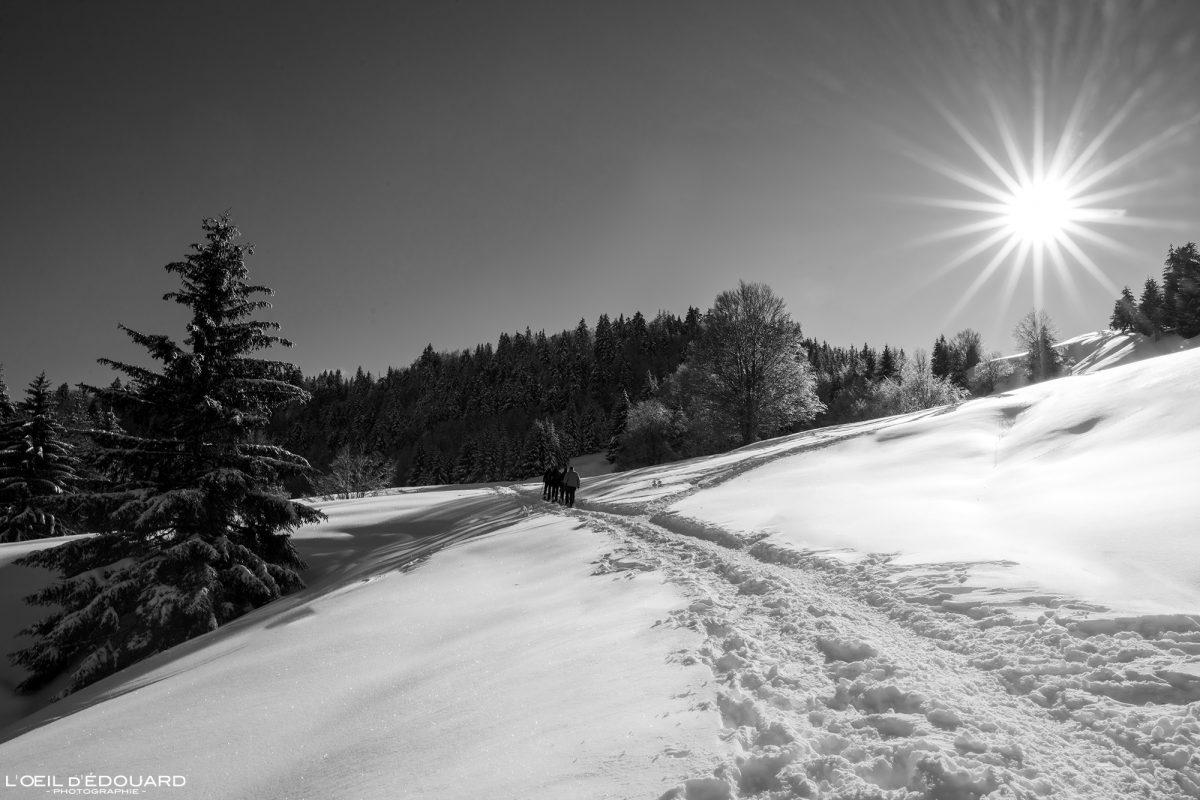Randonnée Raquettes Le Revard Massif des Bauges Savoie Alpes Paysage Montagne Hiver neige France Outdoor winter snow French Alps Mountain Landscape