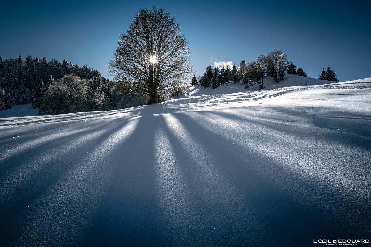 Randonnée Raquettes Le Revard Massif des Bauges Savoie Alpes Paysage Montagne Hiver neige France Outdoor sun shadow tree winter snow French Alps Mountain Landscape
