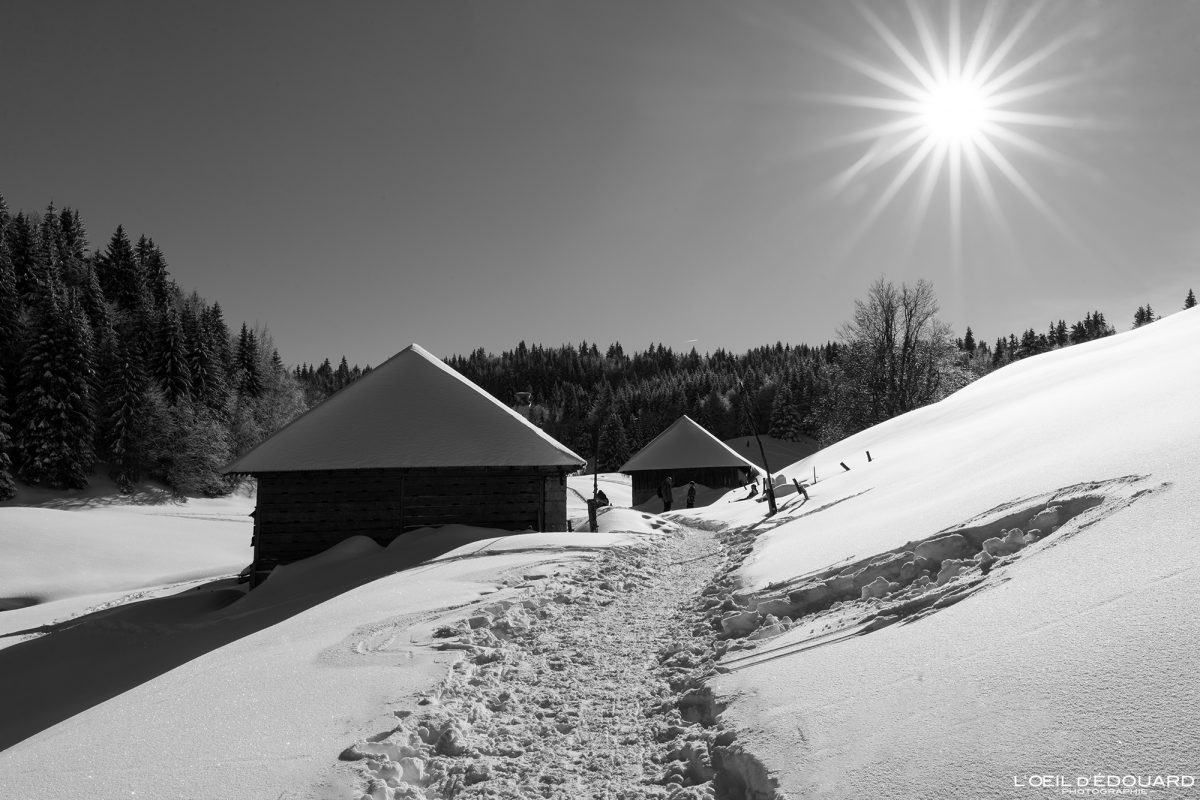 Randonnée Raquettes Chalets de Crolles Le Revard Massif des Bauges Savoie Alpes Paysage Montagne Hiver neige France Outdoor winter snow French Alps Mountain Landscape