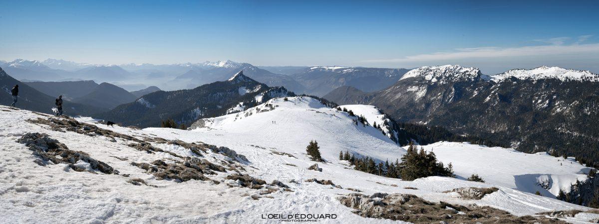 Ski de randonnée Sommet du Charmant Som en hiver Massif de la Chartreuse Isère Alpes Paysage Montagne Neige France Outdoor French Alps Mountain Landscape Winter Snow Skiing Ski Touring
