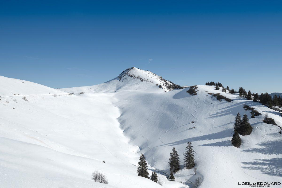 Ski de randonnée Le Charmant Som en hiver Massif de la Chartreuse Isère Alpes Paysage Montagne Neige France Outdoor French Alps Mountain Landscape Winter Snow skiing Ski Touring