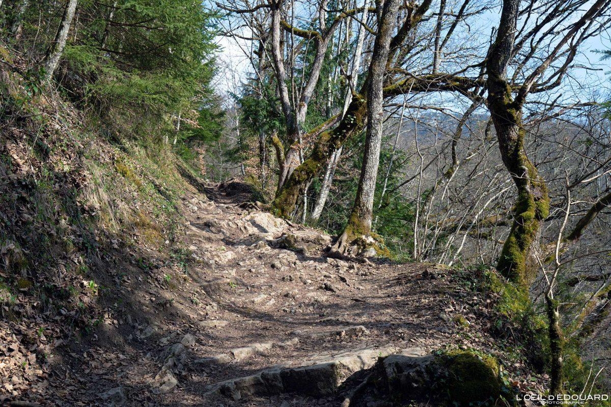Randonnée Vérel Lac d'Annecy Haute-Savoie Alpes Montagne Paysage France Outdoor French Alps Mountain Landscape Hike Hiking Trail