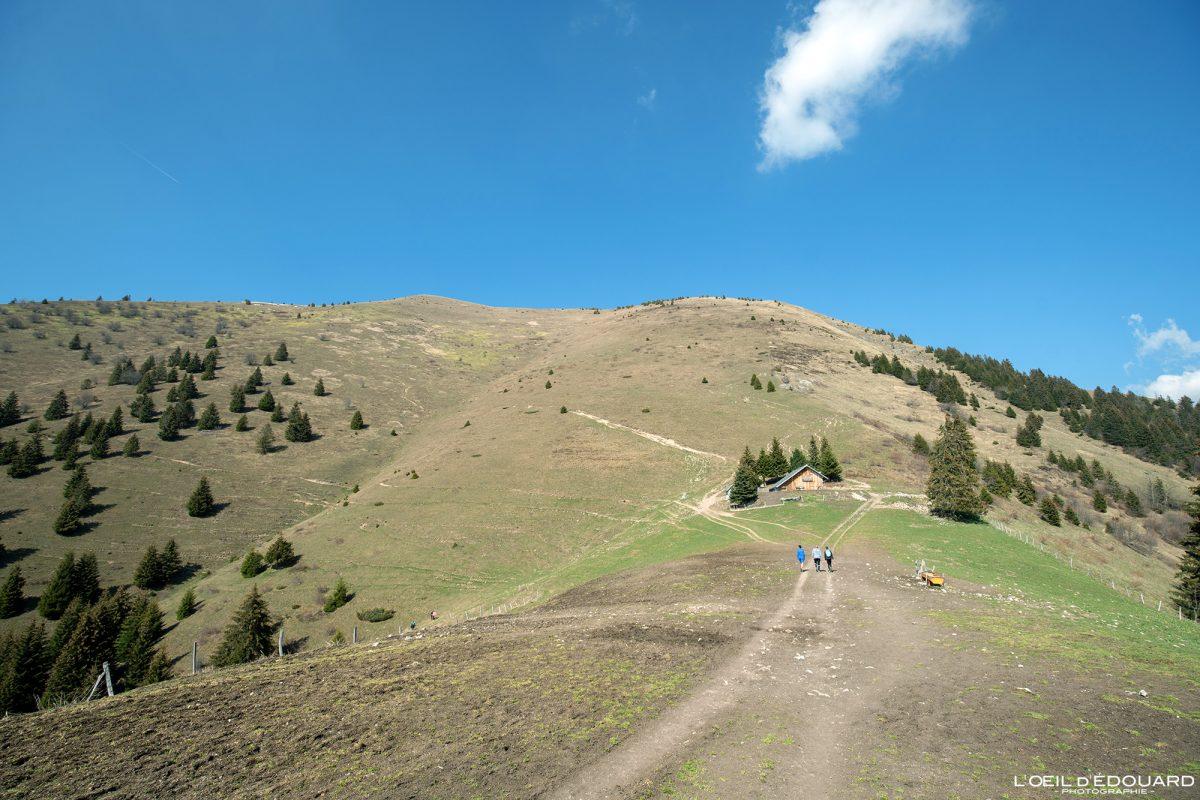Le Petit Môle Randonnée Le Môle Massif du Chablais Haute-Savoie Alpes France Paysage Montagne Outdoor French Alps Mountain Landscape Hike Hiking trail