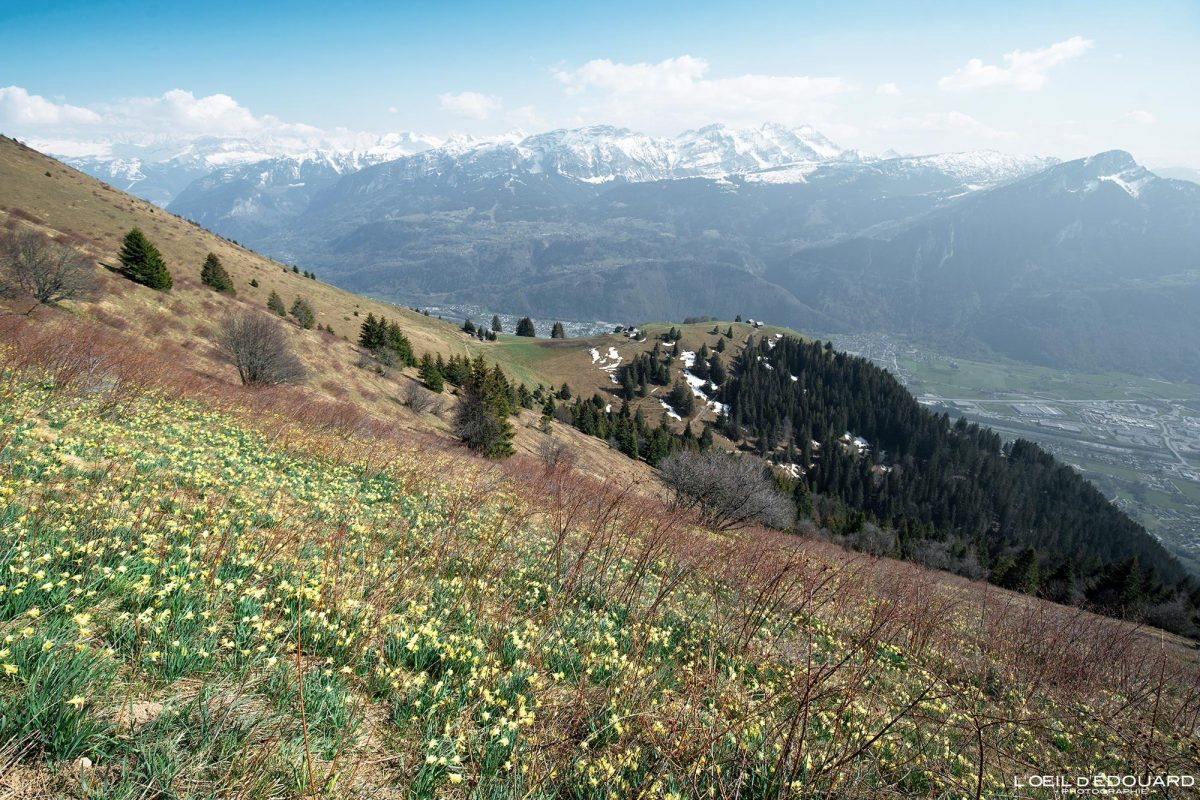 Le Môle Randonnée Massif du Chablais Haute-Savoie Alpes France Paysage Montagne Outdoor French Alps Mountain Landscape Hike Hiking