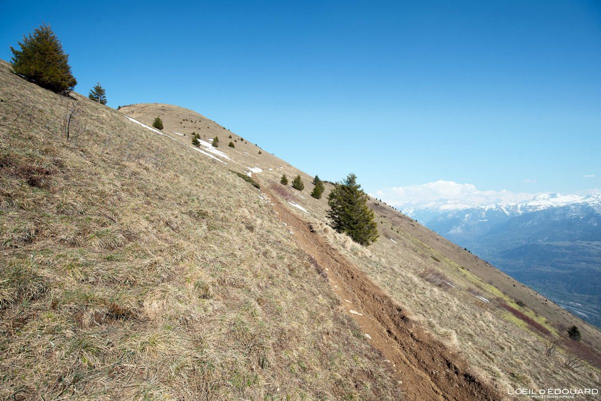 Sentier de randonnée Le Môle Massif du Chablais Haute-Savoie Alpes France Paysage Montagne Outdoor French Alps Mountain Hike Hiking trail